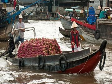 Mekong Delta Vietnam CTS horizons.jpg