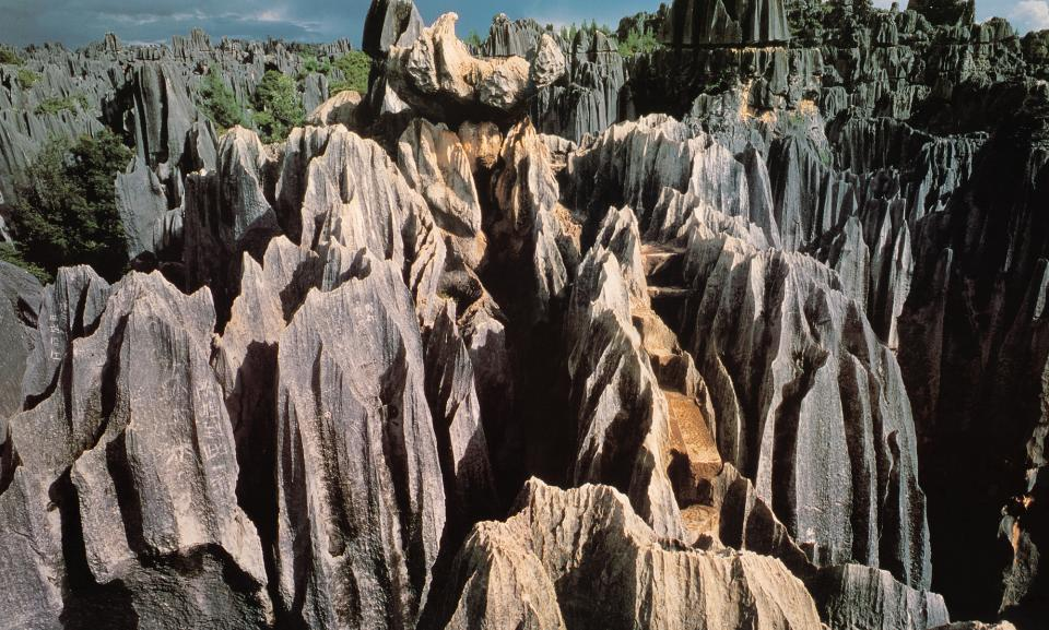 Tour china stone forest.jpg