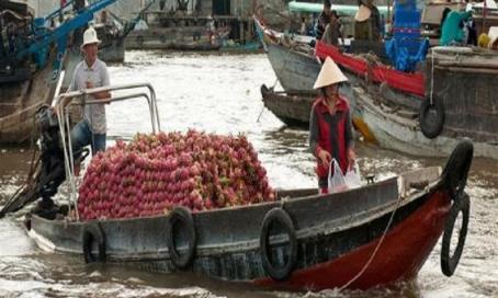 Mekong Delta Vietnam CTS horizons_0.jpg